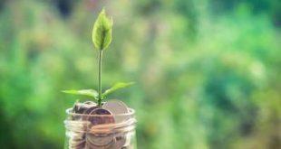 سنتان مهلة لمصارف التمويل الأصغر لتوفيق أوضاعها بناء على المعايير الجديدة